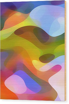 Dappled Light 5 Wood Print by Amy Vangsgard