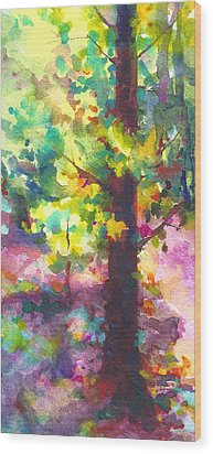 Dappled - Light Through Tree Canopy Wood Print by Talya Johnson