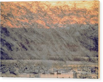 Dawn Liftoff Wood Print by Steven Ralser