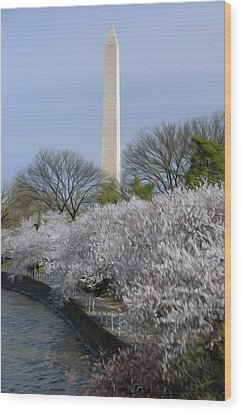 Dc Blossoms Wood Print by Kelvin Booker