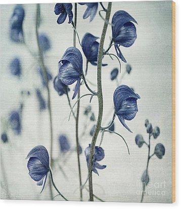 Deadly Beauty Wood Print by Priska Wettstein
