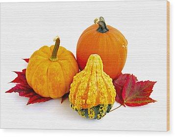 Decorative Pumpkins Wood Print by Elena Elisseeva