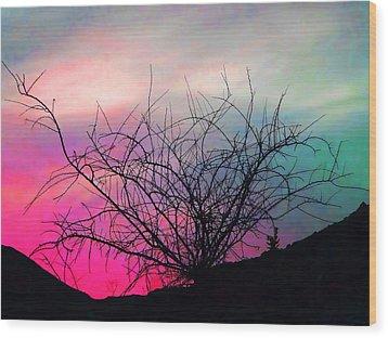 Desert Sunset Wood Print by Terril Heilman