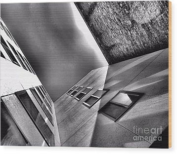 Different Point Of View Wood Print by Lauren Leigh Hunter Fine Art Photography