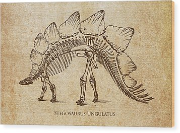 Dinosaur Stegosaurus Ungulatus Wood Print by Aged Pixel
