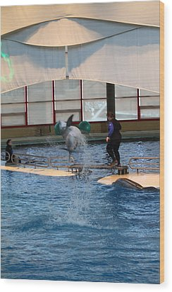 Dolphin Show - National Aquarium In Baltimore Md - 121267 Wood Print by DC Photographer