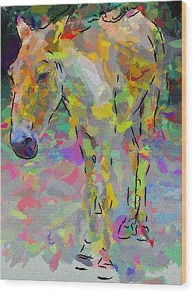 Donkey's Dreams Wood Print by Yury Malkov