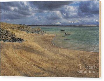 Dream Beach Wood Print by Ian Mitchell