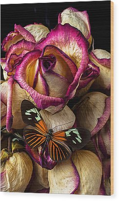 Dried Rose And Butterfly Wood Print by Garry Gay