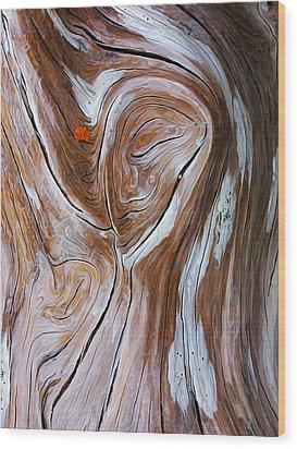 Driftwood 6 Wood Print by Bill Caldwell -        ABeautifulSky Photography