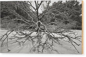 Driftwood Wood Print by Barbara Kraus - Northrup