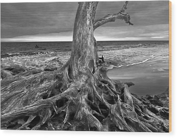 Driftwood On Jekyll Island Black And White Wood Print by Debra and Dave Vanderlaan