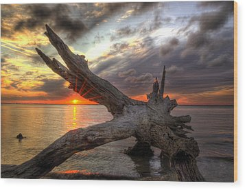 Driftwood Sunset Wood Print by Greg and Chrystal Mimbs