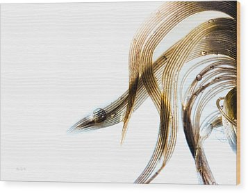 Duck Feather And Water Drops Wood Print by Bob Orsillo