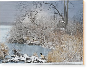 Ducks By The Pond Wood Print by Mary Timman