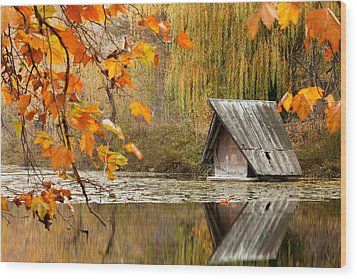 Duck's House Wood Print by Evgeni Dinev