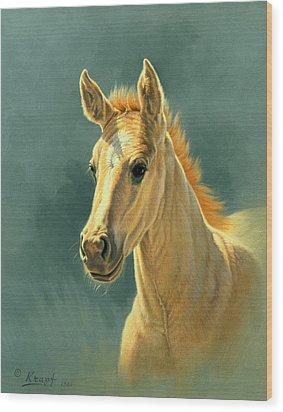 Dun Colt Portrait Wood Print by Paul Krapf