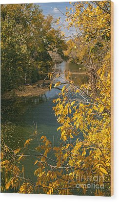 Early Fall On The Navasota Wood Print by Robert Frederick