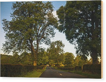 Early Morning On The Way To Trossachs. Scotland Wood Print by Jenny Rainbow