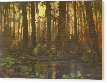 Early Morning Sun On Cannock Chase Wood Print by Jean Walker