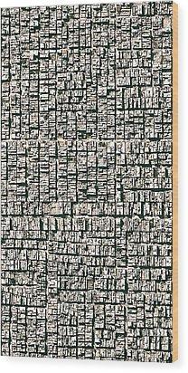 Earth Dwarawati Wood Print by John Illingworth