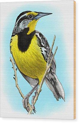 Eastern Meadowlark Wood Print by Roger Hall