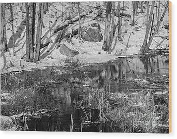 Edge Of The Marsh Wood Print by Alana Ranney