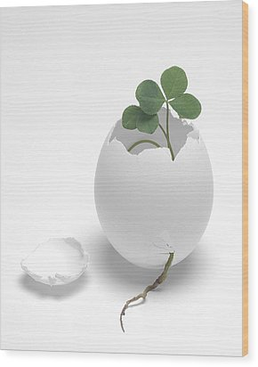 Egg And Clover Wood Print by Krasimir Tolev