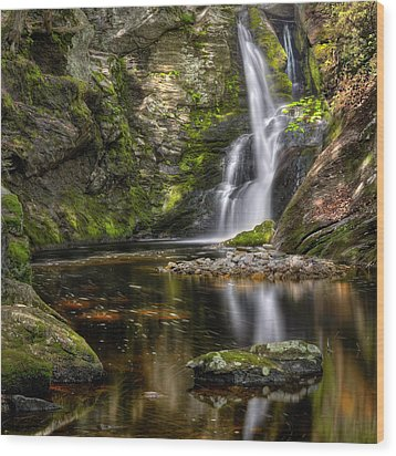 Enders Falls Wood Print by Bill Wakeley