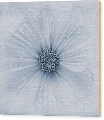 Evanescent Cyanotype Wood Print by John Edwards