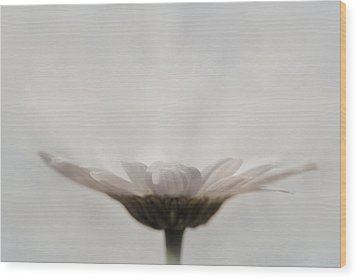 Every Flower Wood Print by Lori Deiter