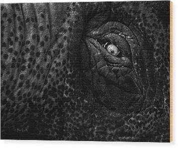Eye Of The Elephant Wood Print by Bob Orsillo