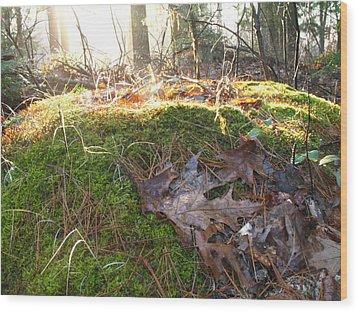 Fairy Mound Wood Print by Lynn-Marie Gildersleeve