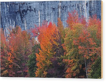 Fall At Steele Creek Wood Print by Marty Koch