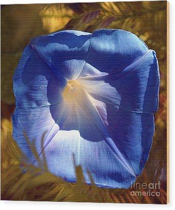Fall Blues Wood Print by Kim Pate