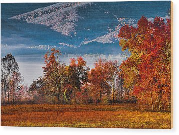 Fall Color Feast Wood Print by Dave Bosse
