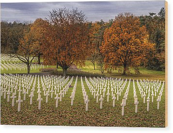 Fallen Soldiers Wood Print by Ryan Wyckoff