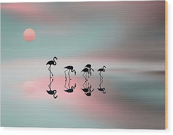 Family Flamingos Wood Print by Natalia Baras