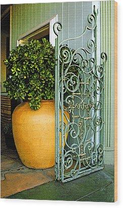 Fancy Gate And Plain Pot Wood Print by Ben and Raisa Gertsberg