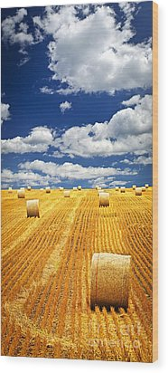 Farm Field With Hay Bales In Saskatchewan Wood Print by Elena Elisseeva
