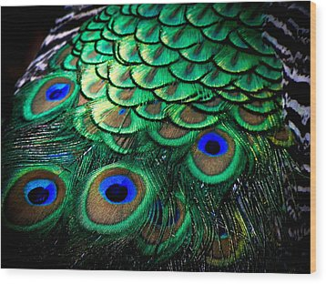 Feather Abstract Wood Print by Karen Wiles