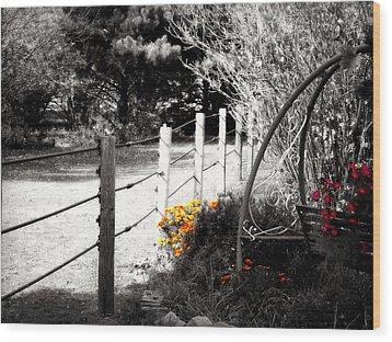 Fence Near The Garden Wood Print by Julie Hamilton
