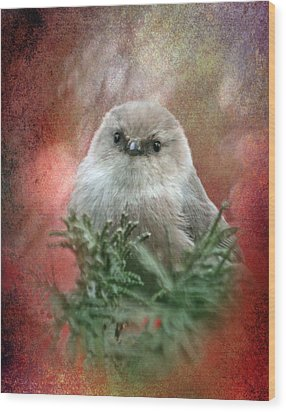 Festive Bushtit Wood Print by Angie Vogel