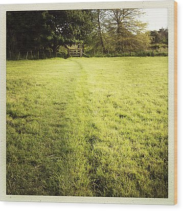 Field Wood Print by Les Cunliffe