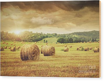 Field Of Freshly Bales Of Hay With Beautiful Sunset Wood Print by Sandra Cunningham