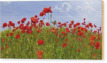 Field Of Red Poppies Wood Print by Melanie Viola