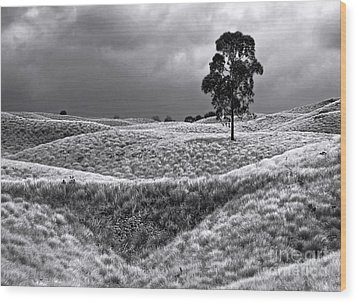 Field Of Saddle Road Dreams Wood Print by Ellen Cotton