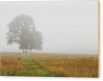 Fields In The Fog Wood Print by Andrew Soundarajan