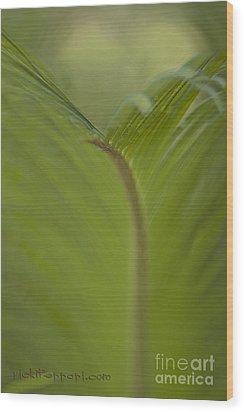 Fight Or Flight Wood Print by Vicki Ferrari