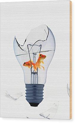 Fine Art Untitled No.26 Wood Print by Caio Caldas